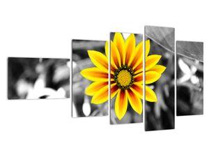 Obraz žluté květiny (V020361V11060)