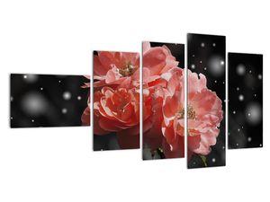 Obraz růžové květiny (V020471V11060)