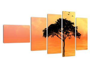 Obraz stromu v západu slunce (V020480V11060)