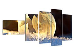 Kép - fagyott buborékok (V020519V11060)