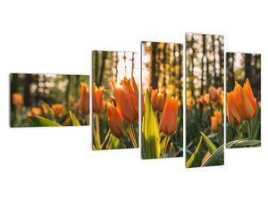 Obraz - oranžové tulipány (V020552V11060)