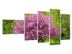 Obraz rozkvetlého stromu na louce (V020654V11060)