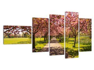 Obraz - sad třešní (V020679V11060)