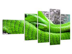 Obraz zelených hadů (V020689V11060)