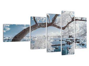 Obraz zasněženého stromu u vody (V020718V11060)
