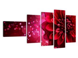 Obraz červené kvety (V020807V11060)