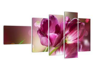 Obraz růžových tulipánů (V020887V11060)