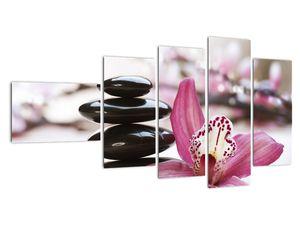 Obraz masážních kamenů a orchidee (V020910V11060)