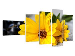 Obraz žluté květiny (V020952V11060)
