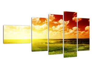Obraz lúky so žiariacim slnkom (V021174V11060)