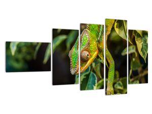 Obraz chameleona (V021236V11060)