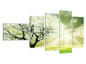 Obraz stromu na lúke (V021282V11060)