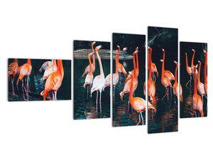 Obraz stáda plameňáků (V021626V11060)