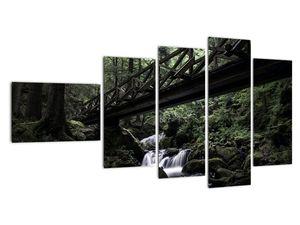 Obraz z černého lesa (V021686V11060)
