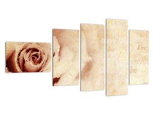 Obraz - Květ růže pro zamilované (V021945V11060)