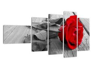 Slika crvene ruže (V022288V11060)