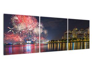 Tablou cu artificii in Singapur (V020035V12040)