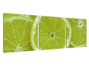 Kép - citrom szelet (V020164V12040)