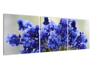 Obraz kytice modrých květů (V020175V12040)