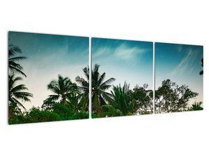 Tablou - palmierii (V020239V12040)