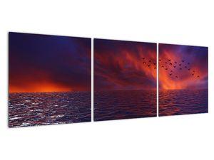 Obraz moře s ptáky (V020351V12040)