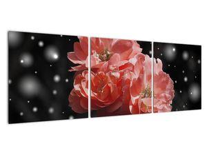 Obraz růžové květiny (V020471V12040)
