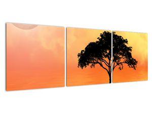 Obraz stromu v západu slunce (V020480V12040)