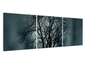 Obraz stromu v zatmění (V020675V12040)