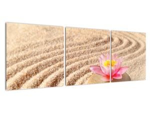 Obraz kameňa s kvetinou na piesku (V020864V12040)