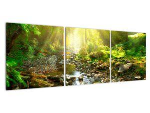Obraz řeky v zeleném lese (V020942V12040)