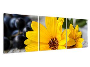 Obraz žluté květiny (V020952V12040)