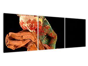 Obraz chameleona na větvi (V021125V12040)