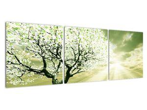 Obraz stromu na lúke (V021282V12040)