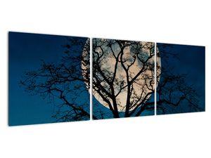 Obaz stromu s úplňkem (V021355V12040)
