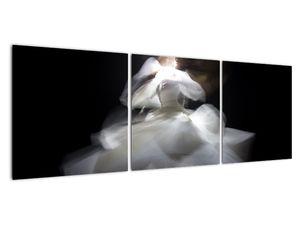 Lótuszvirág képe (V021597V12040)