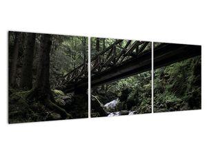 Obraz z černého lesa (V021686V12040)