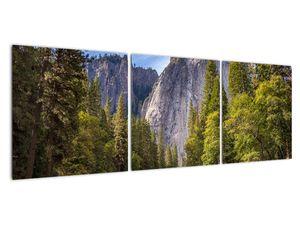 Kép - A Yosemite szikla alatt (V021691V12040)