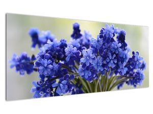 Obraz kytice modrých květů (V020175V12050)
