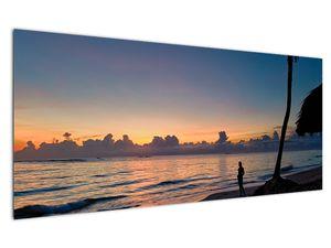 Kép egy nőről a tengerparton (V020204V12050)