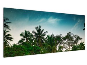 Tablou - palmierii (V020239V12050)