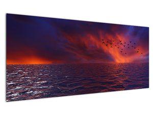 Obraz moře s ptáky (V020351V12050)