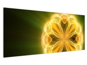 Obraz žluté květiny (V020451V12050)
