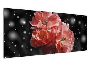 Obraz růžové květiny (V020471V12050)