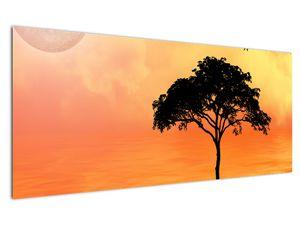 Obraz stromu v západu slunce (V020480V12050)