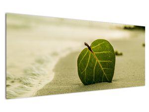 Kép egy levél a homokban (V020485V12050)