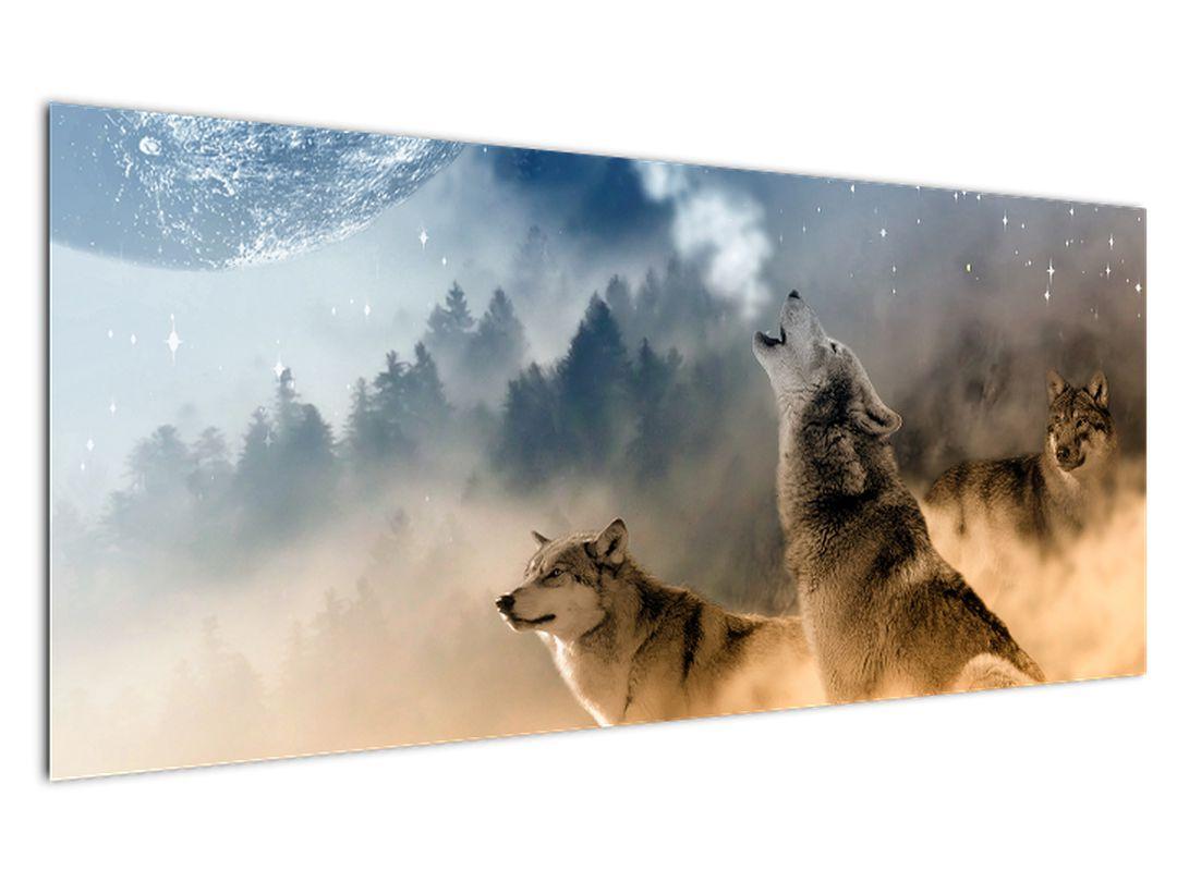 Slika - vukovi zavijaju na mjesec (V020509V12050)