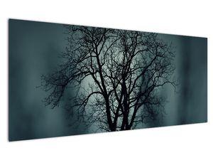 Obraz stromu v zatmění (V020675V12050)
