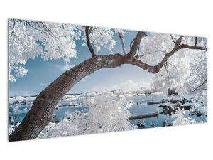 Obraz zasněženého stromu u vody (V020718V12050)