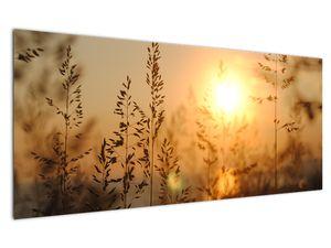 Obraz východu slunce (V020870V12050)