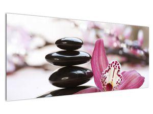 Obraz masážních kamenů a orchidee (V020910V12050)